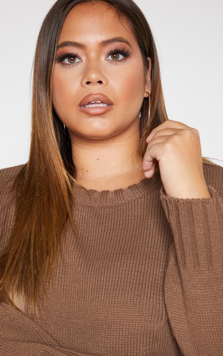 Plus Camel Batwing Sweater 5