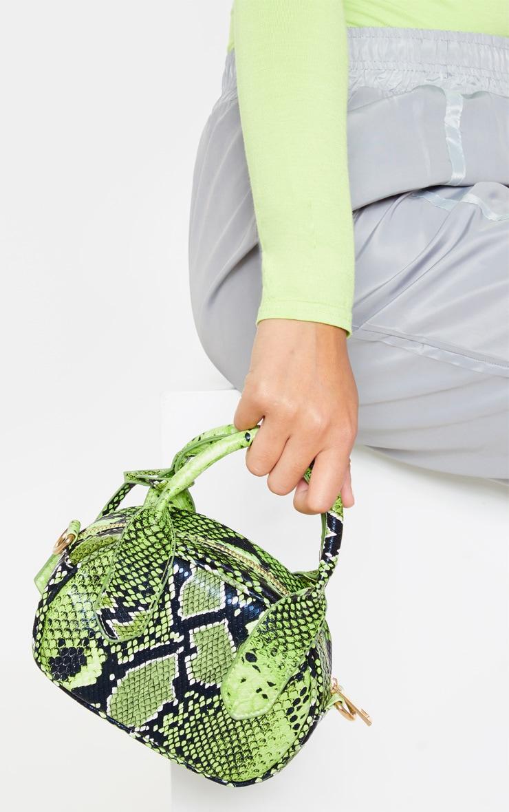 Green Snake Grab Bag 1