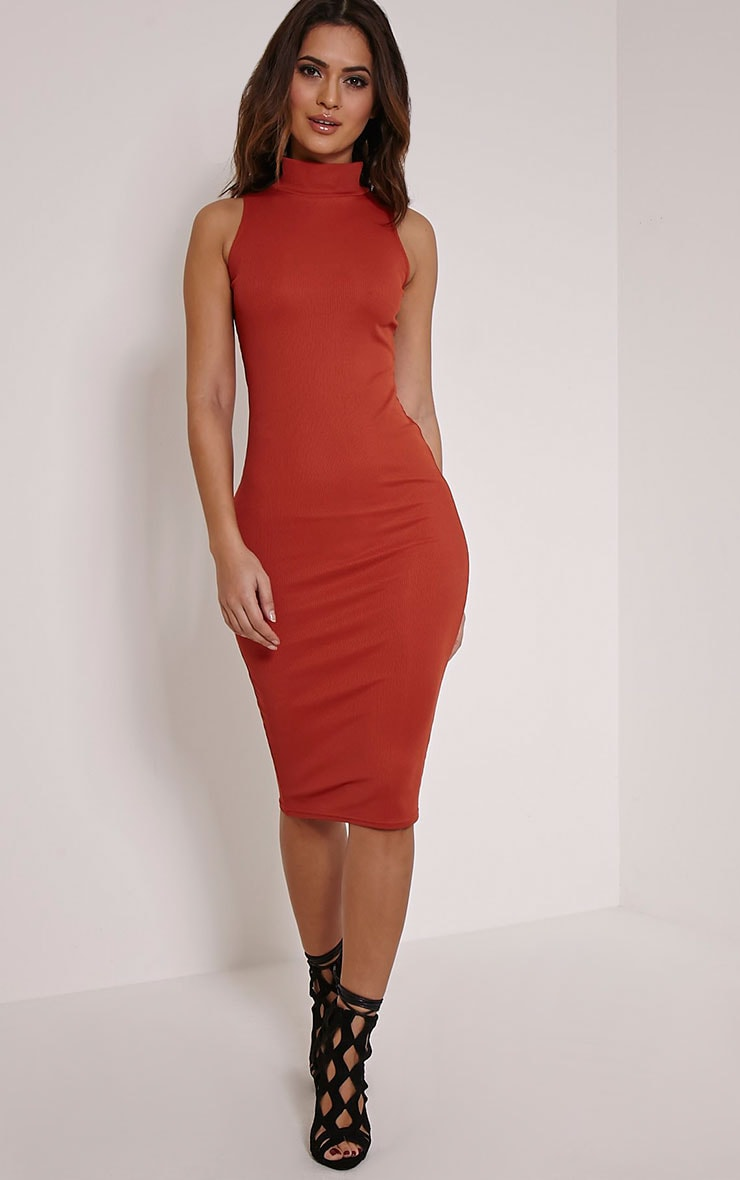 Basic Rust High Neck Dress 1