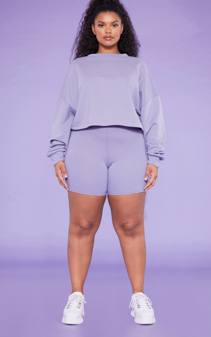 RECYCLED Plus Violet Crop Sweater 4