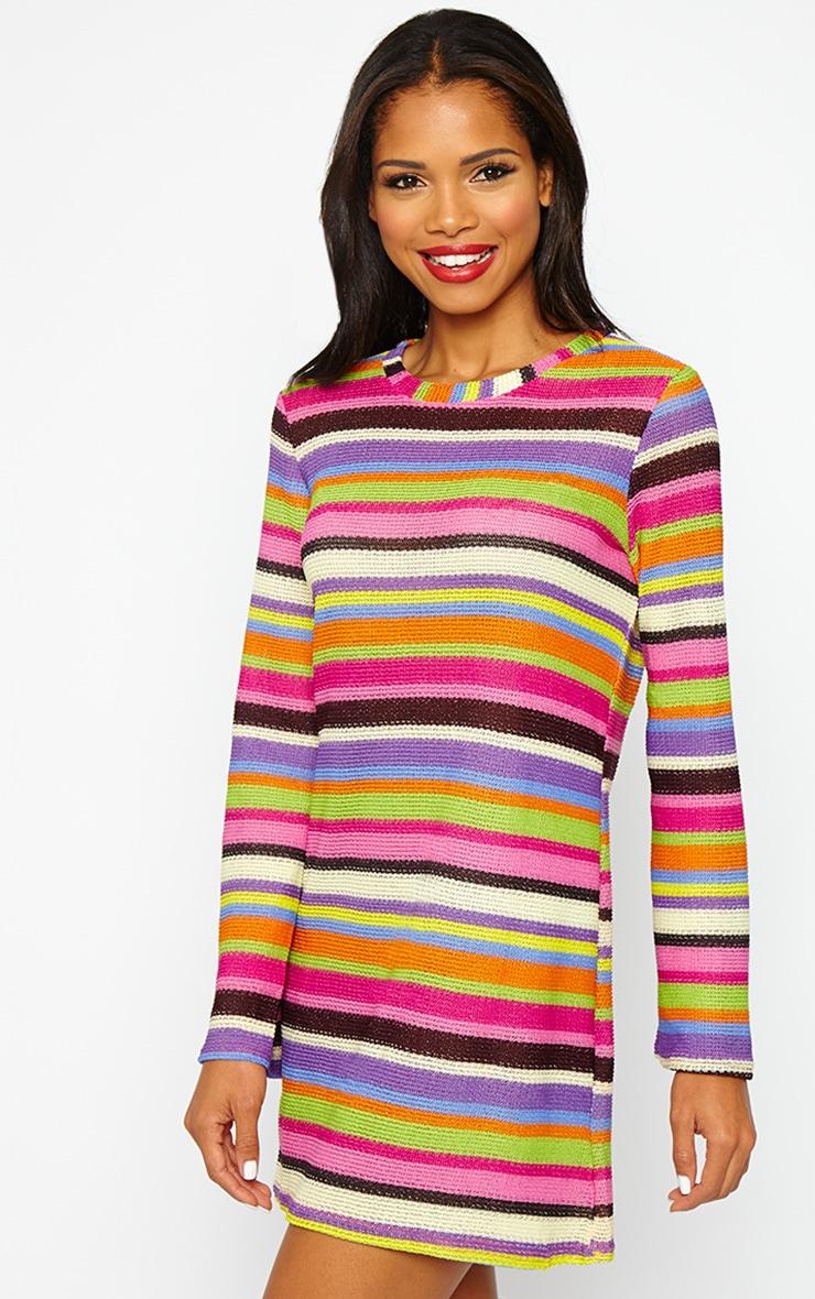 Misty Knitted Stripe Dress 4