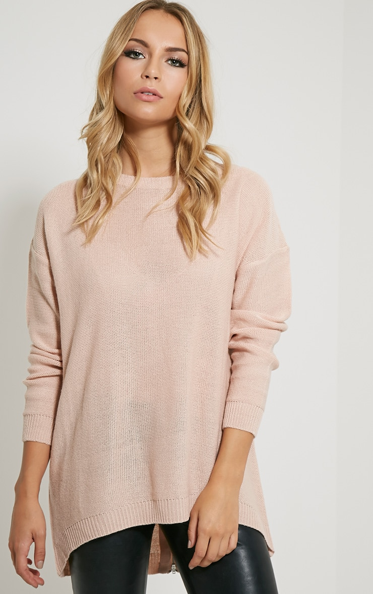 Amia Pink Zip Back Jumper 1