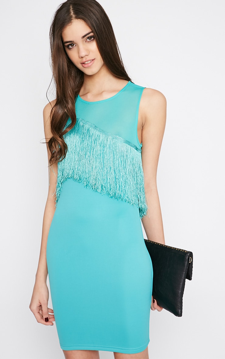 Mireya Mint Tassel Mini Dress 5