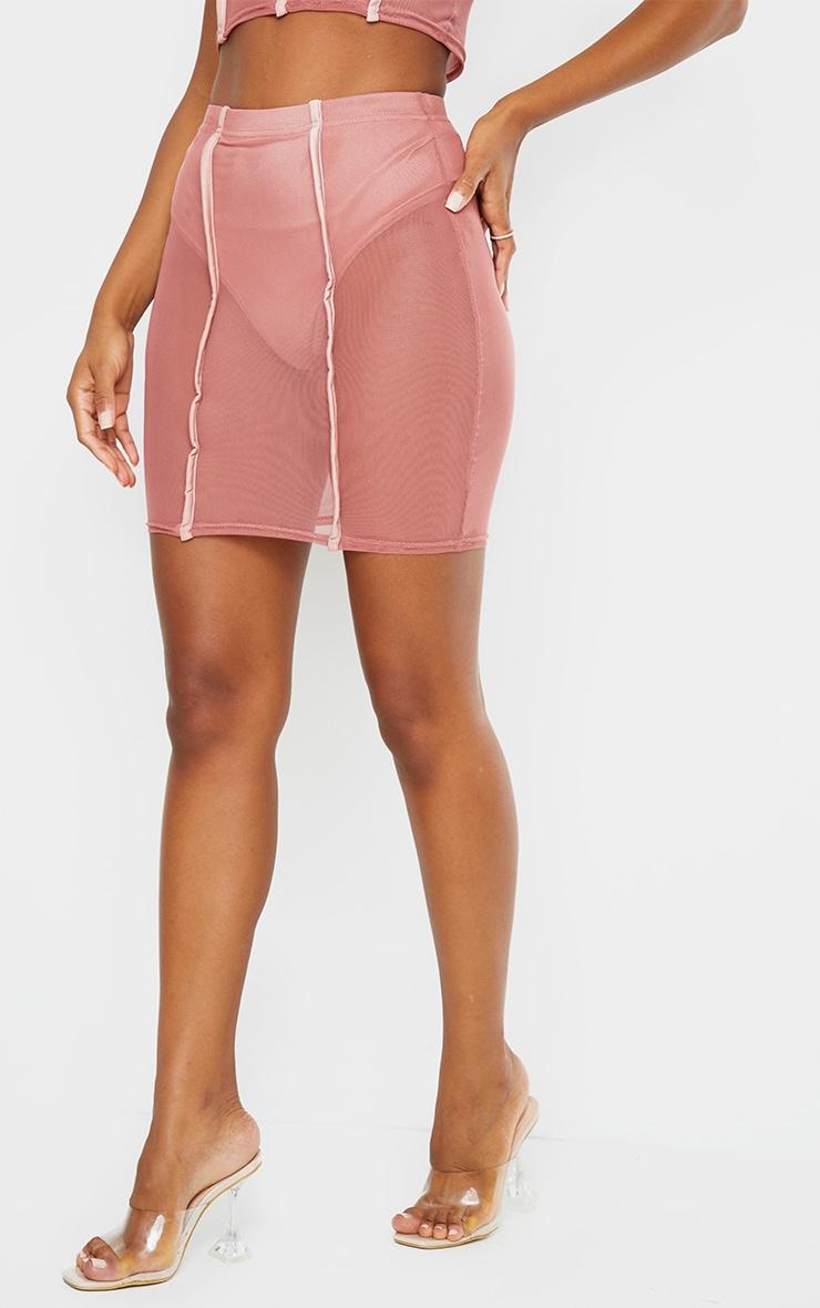 Rose Mesh Knicker Insert Mini Skirt 2