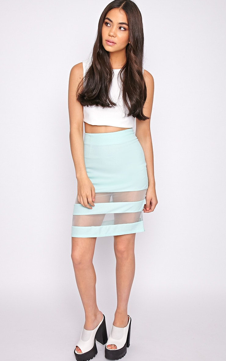 Dakota Mint Mesh Insert Skirt  3