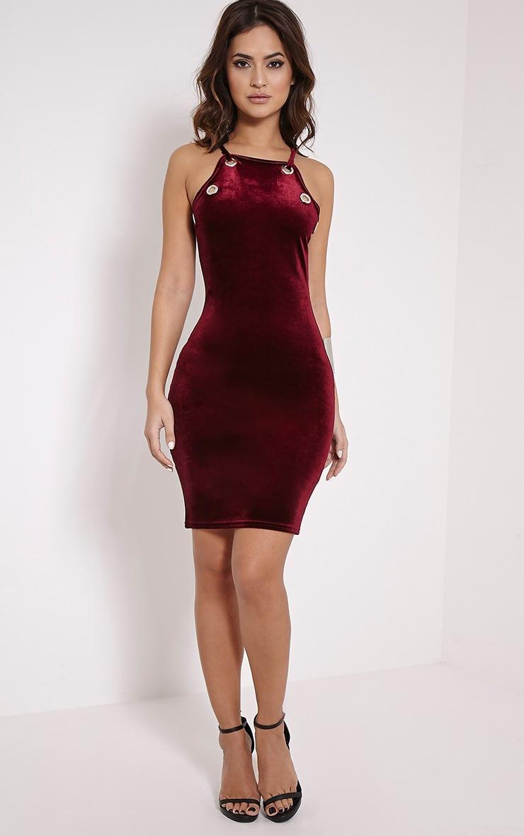 Alyssa Wine Velvet Eyelet Mini Dress 3