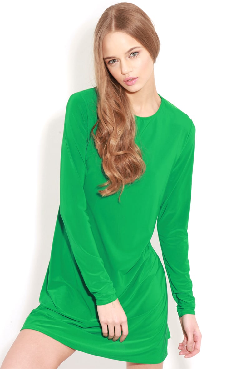 Ellen Green Long Sleeved Swing Dress  1