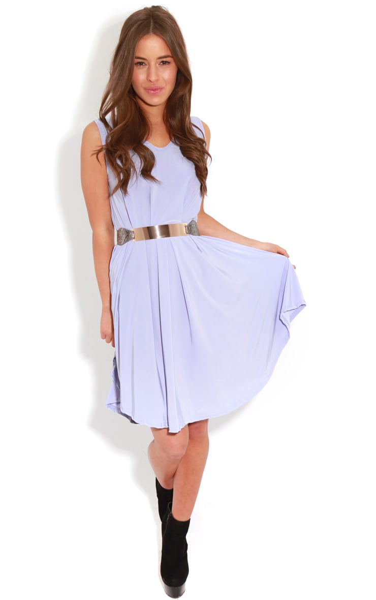 Anita Lilac Swing Dress 3