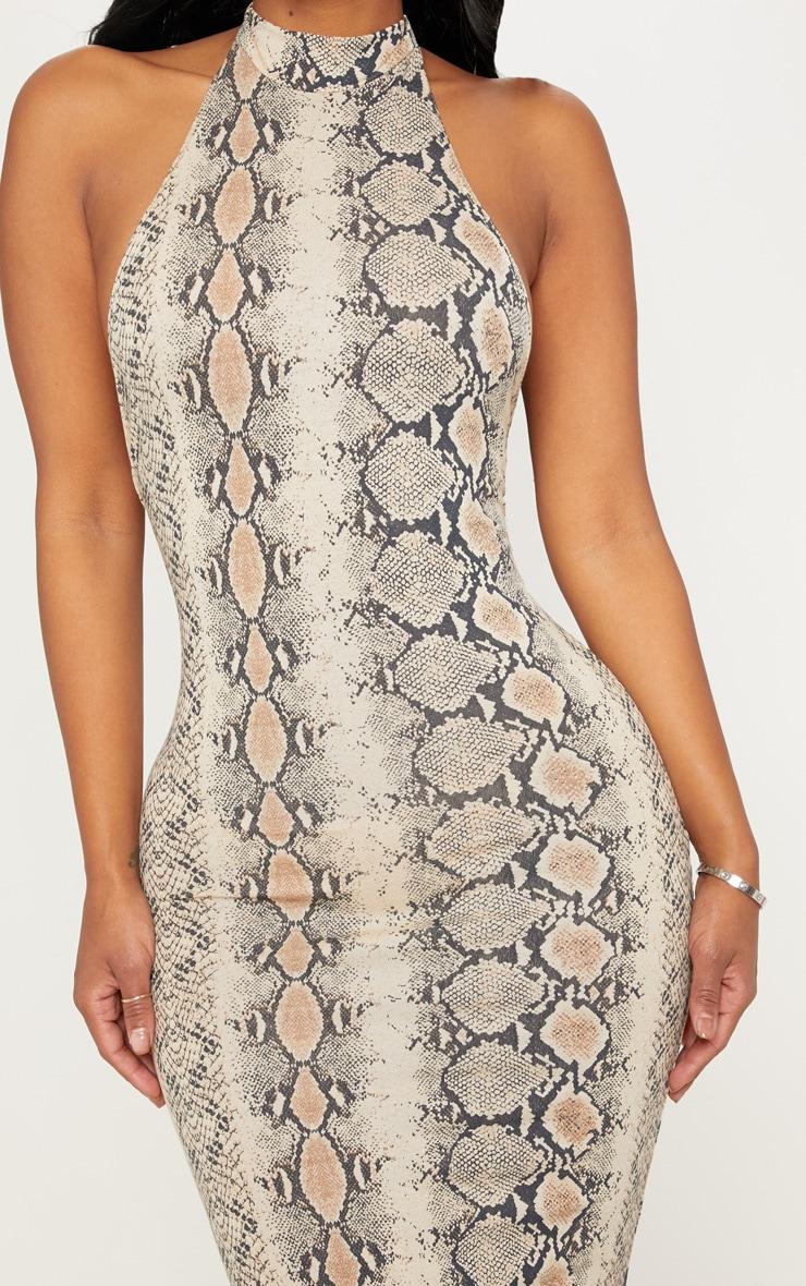Shape Taupe Snake Print Halterneck Midaxi Dress 5
