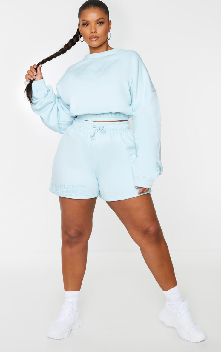 PRETTYLITTLETHING Plus Dusty Blue Sweat Crop Sweater 3