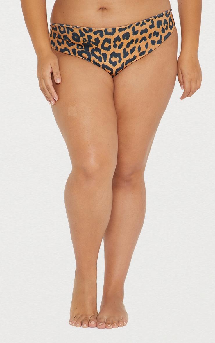 Plus Orange Cheetah Cheeky Bum Bikini Bottoms 3