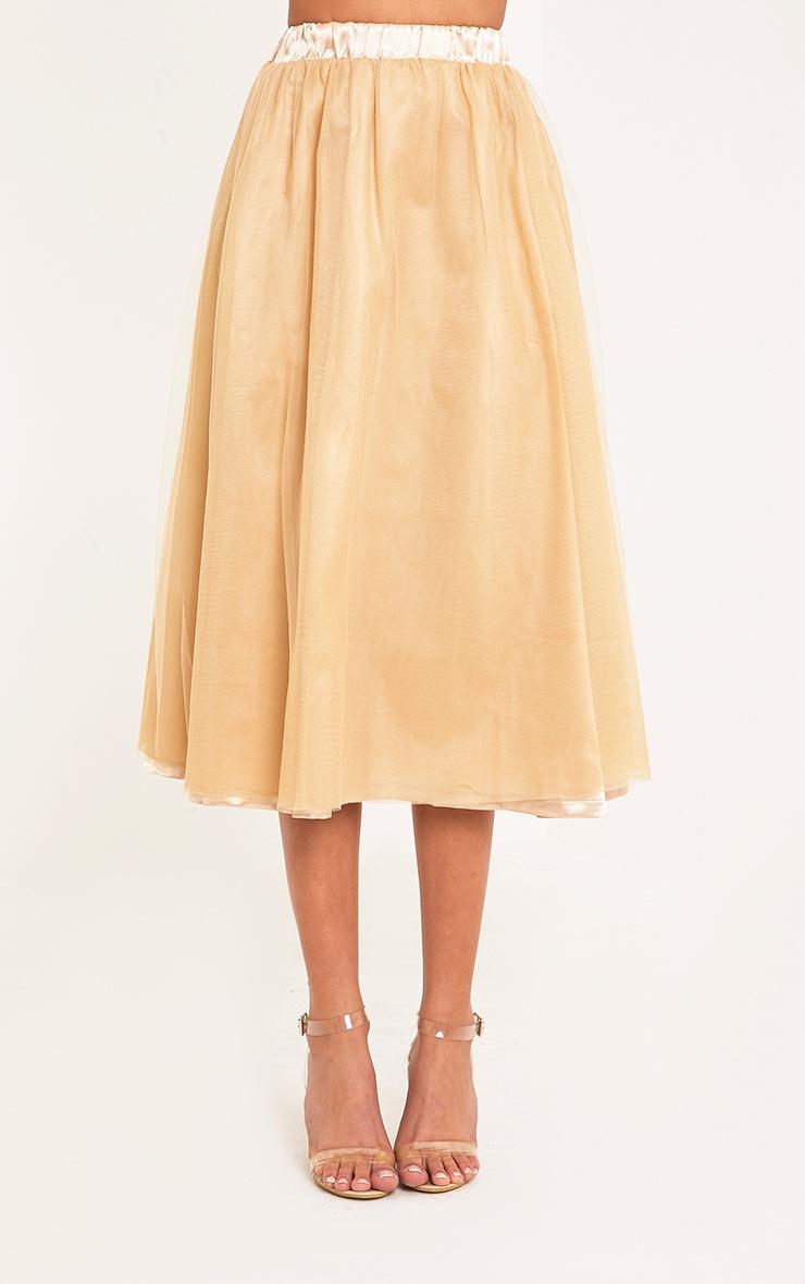 Amalia Champagne Layered Tulle Skirt 2
