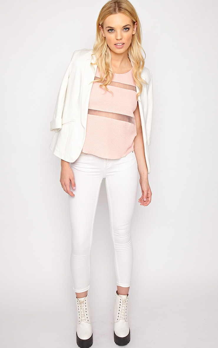 Adrianne Pink Mesh Stripe Top  3