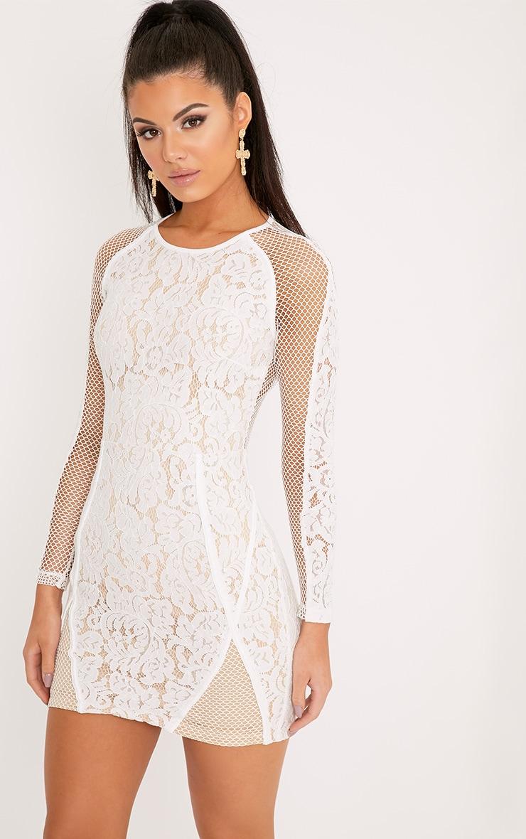Ida White Lace Fishnet Panel Bodycon Dress 1