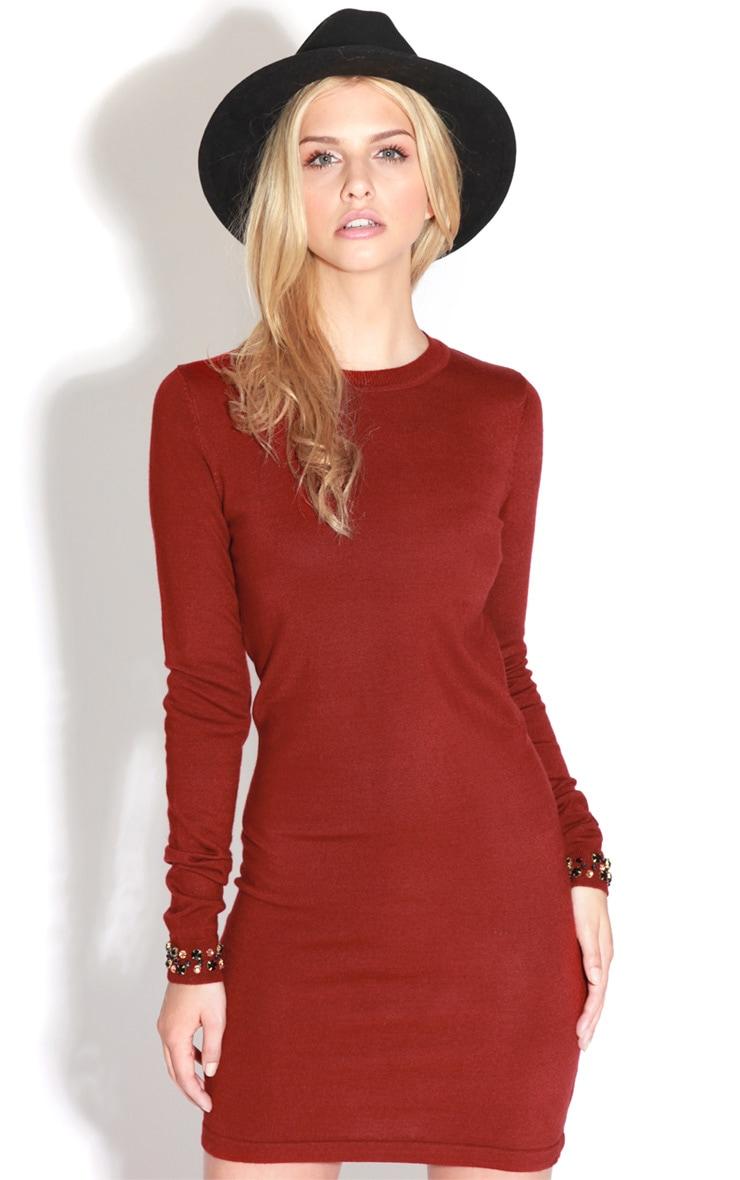Fion Burgundy Long Sleeve Jumper Dress 4