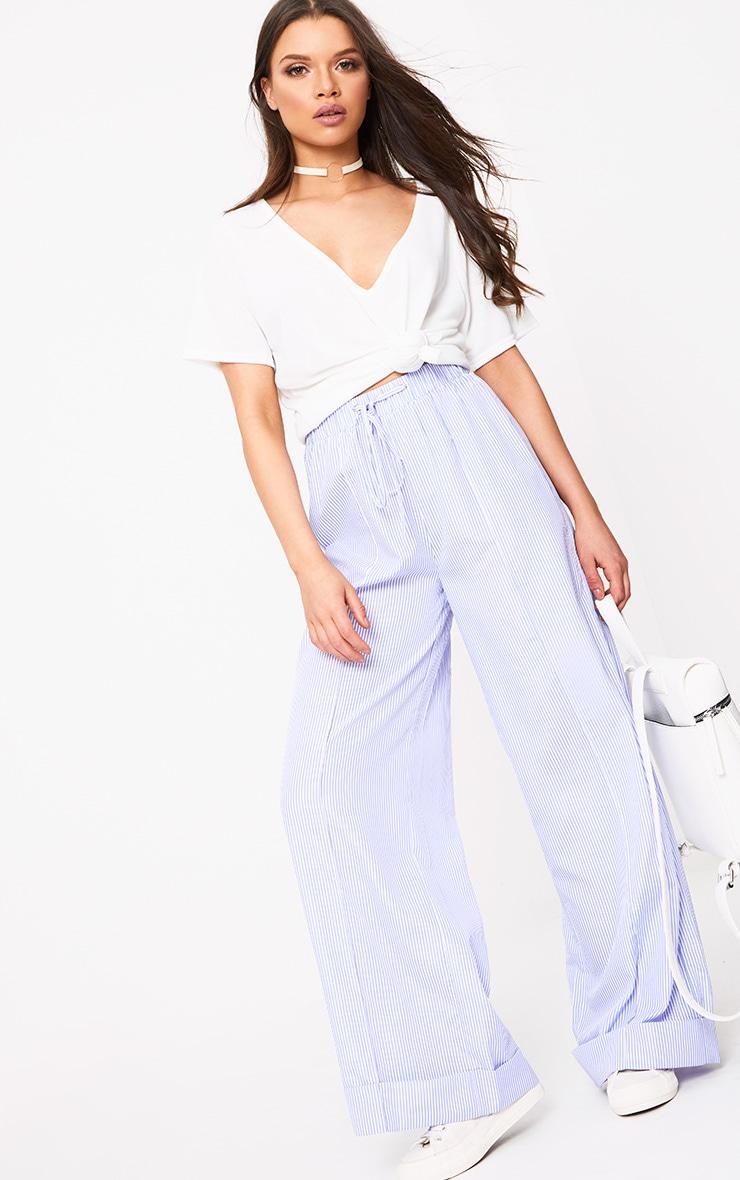 Cayley Light Blue Pinstripe Wide Leg Trousers 1