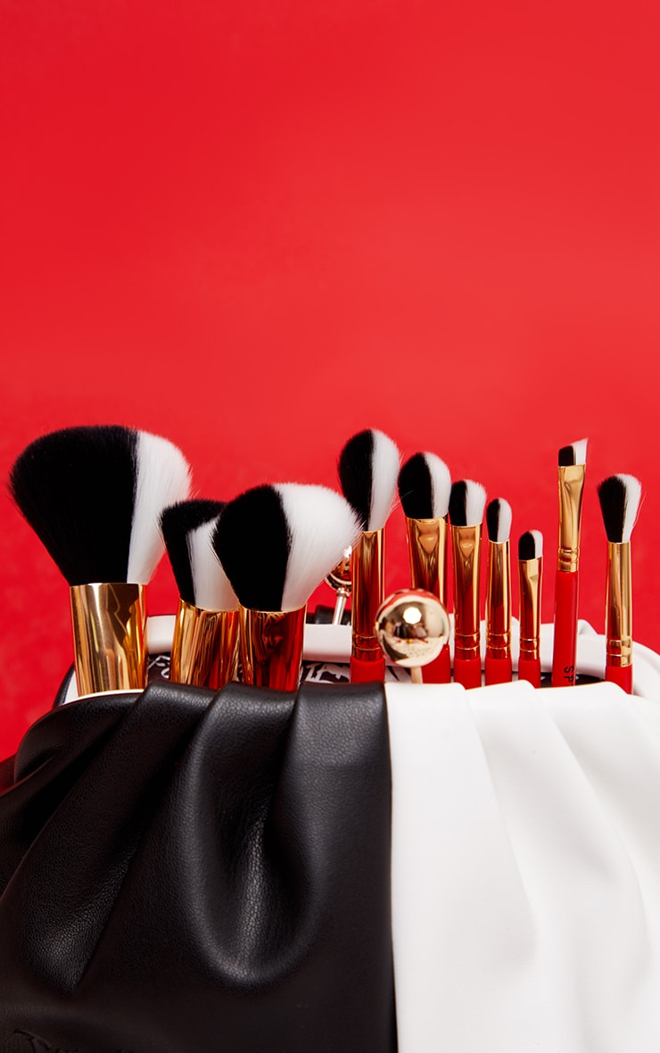 Spectrum Collections Cruella 10 Piece Brush Set 2