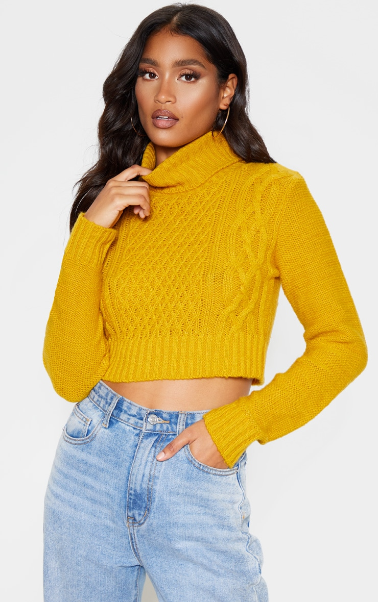 Mustard Roll Neck Fluffy Crop Cable Knit Jumper 1
