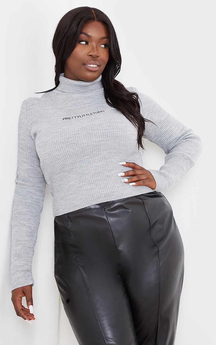 PRETTYLITTLETHING Plus Grey Roll Neck Ribbed Sweater 3