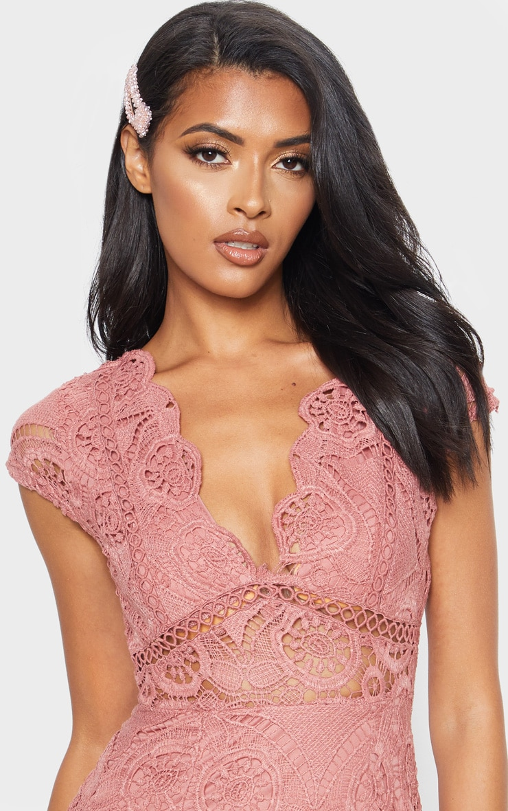 Rose Lace Bodycon Cap Sleeve Dress 5