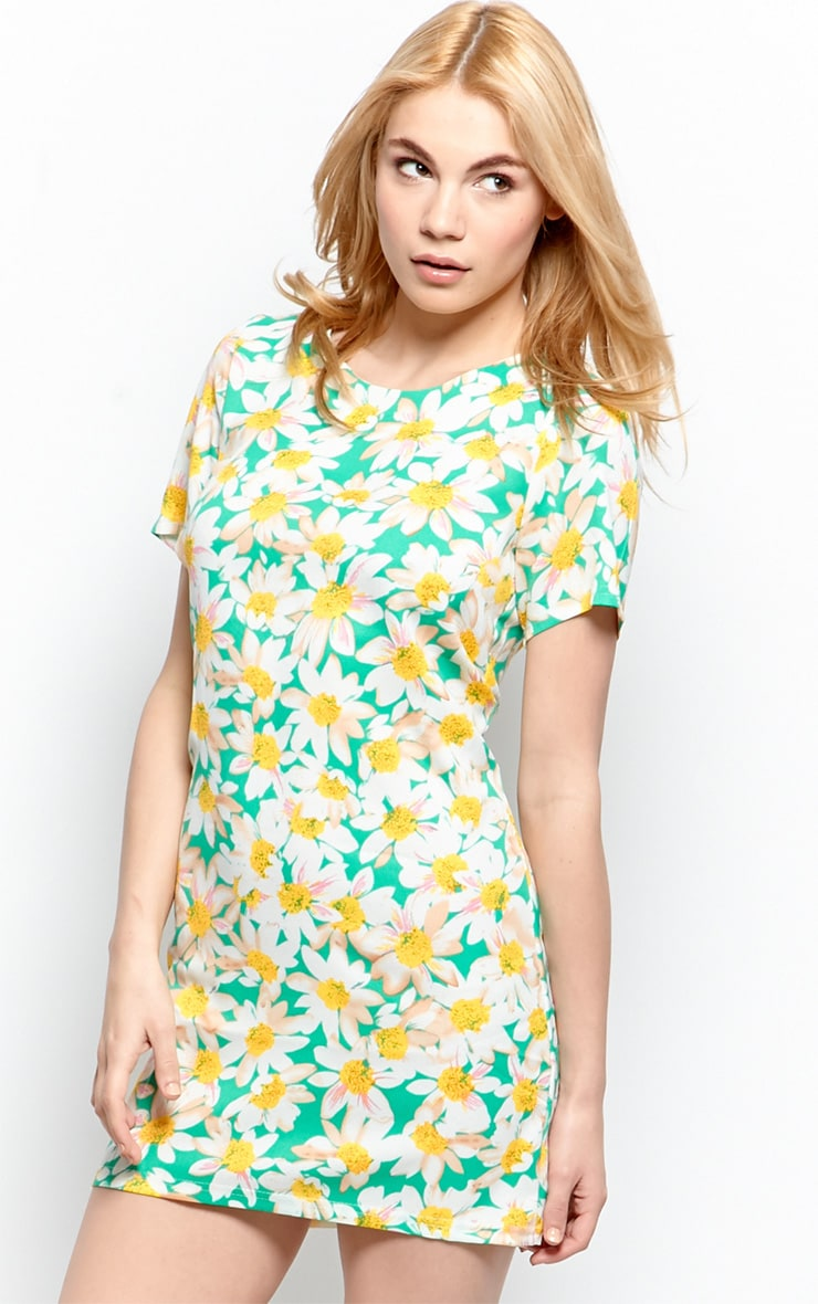 Lybah Mint Floral Shift Dress 5