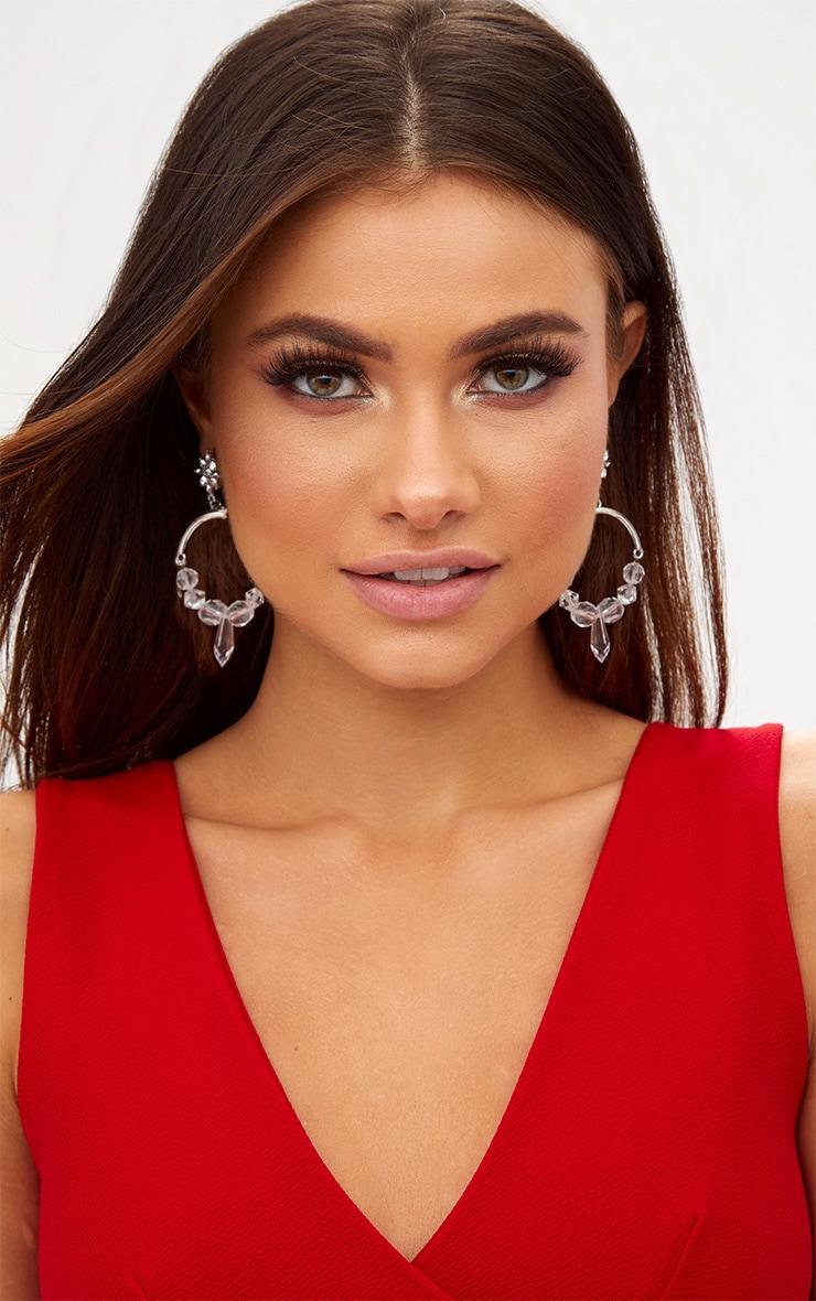 Silver Acrylic Detail Hoop Earrings 1