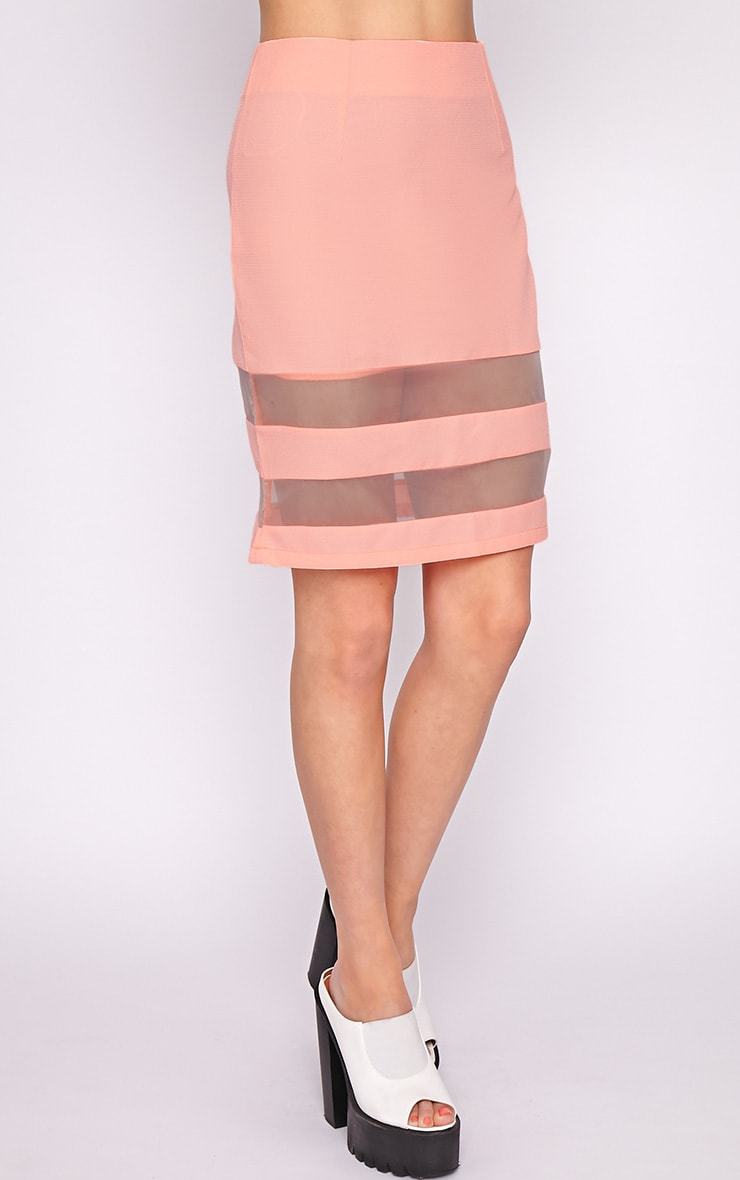 Dakota Coral Mesh Insert Skirt  3