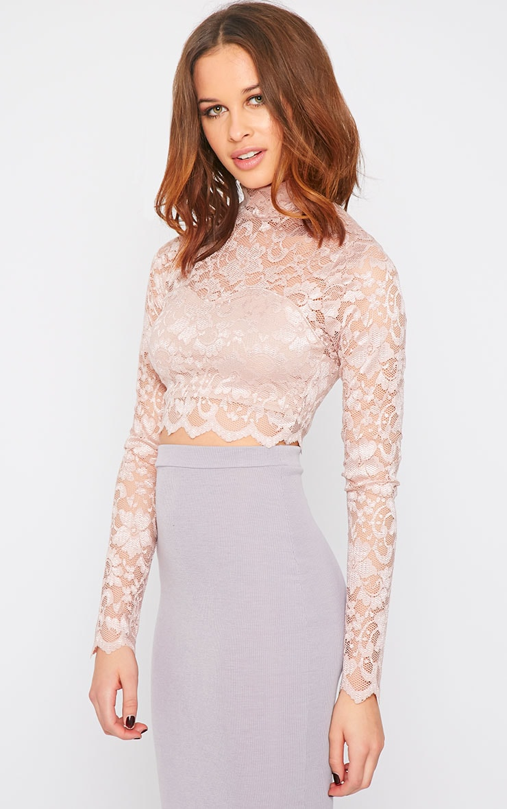 Rachel Pink Lace Turtle Neck Crop Top  6