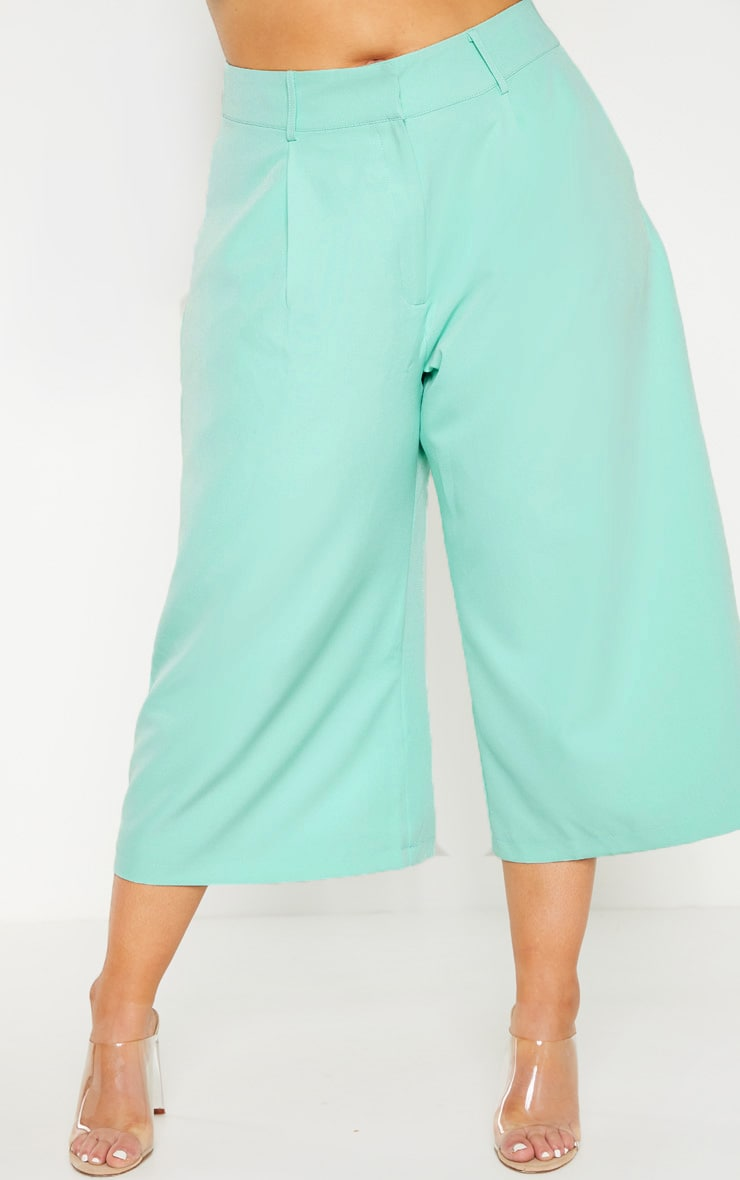 Plus Mint High Waist Culottes 2
