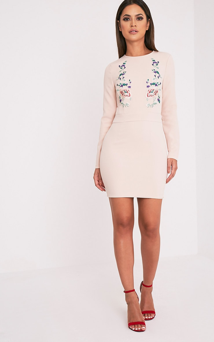 Veronika Nude Embroidered Long Sleeve Bodycon Dress 5
