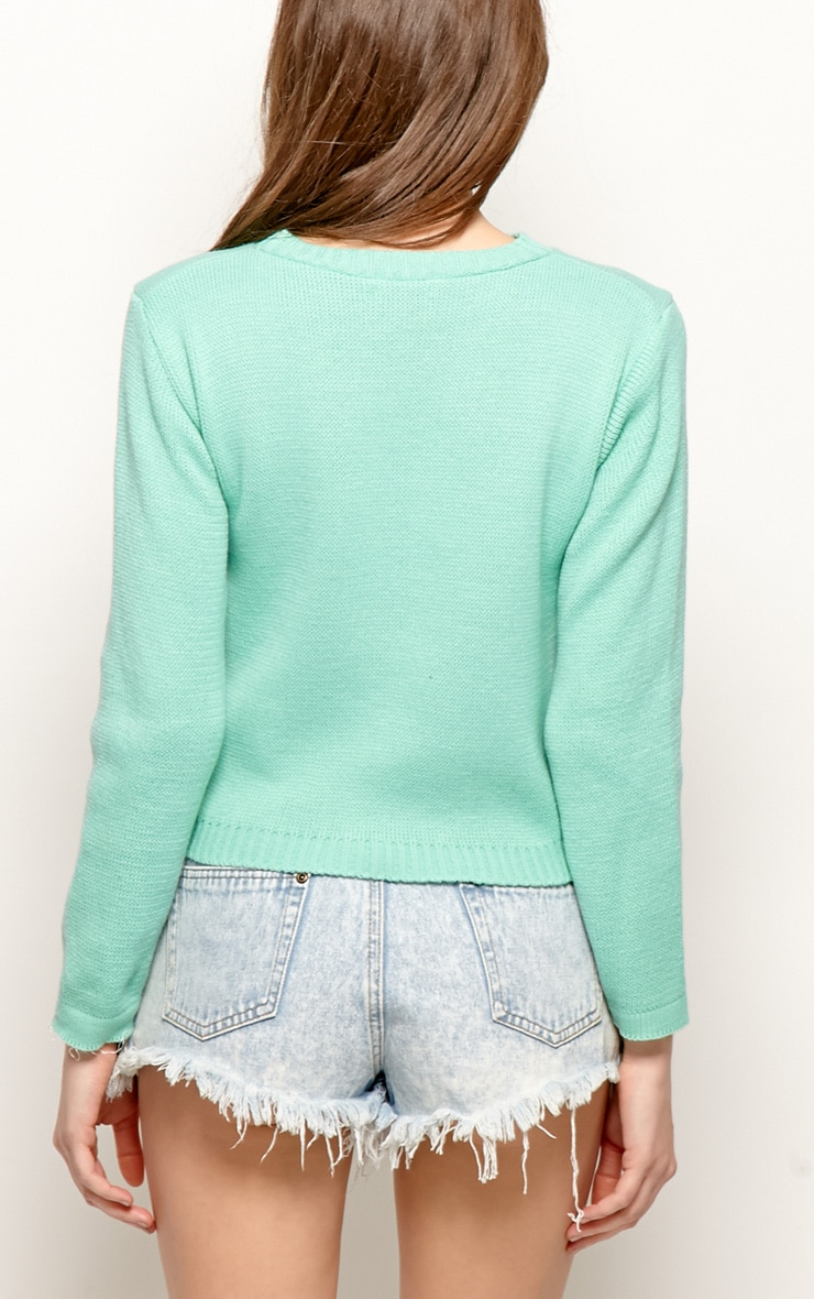 Melanie Mint Rainbow Jumper 2