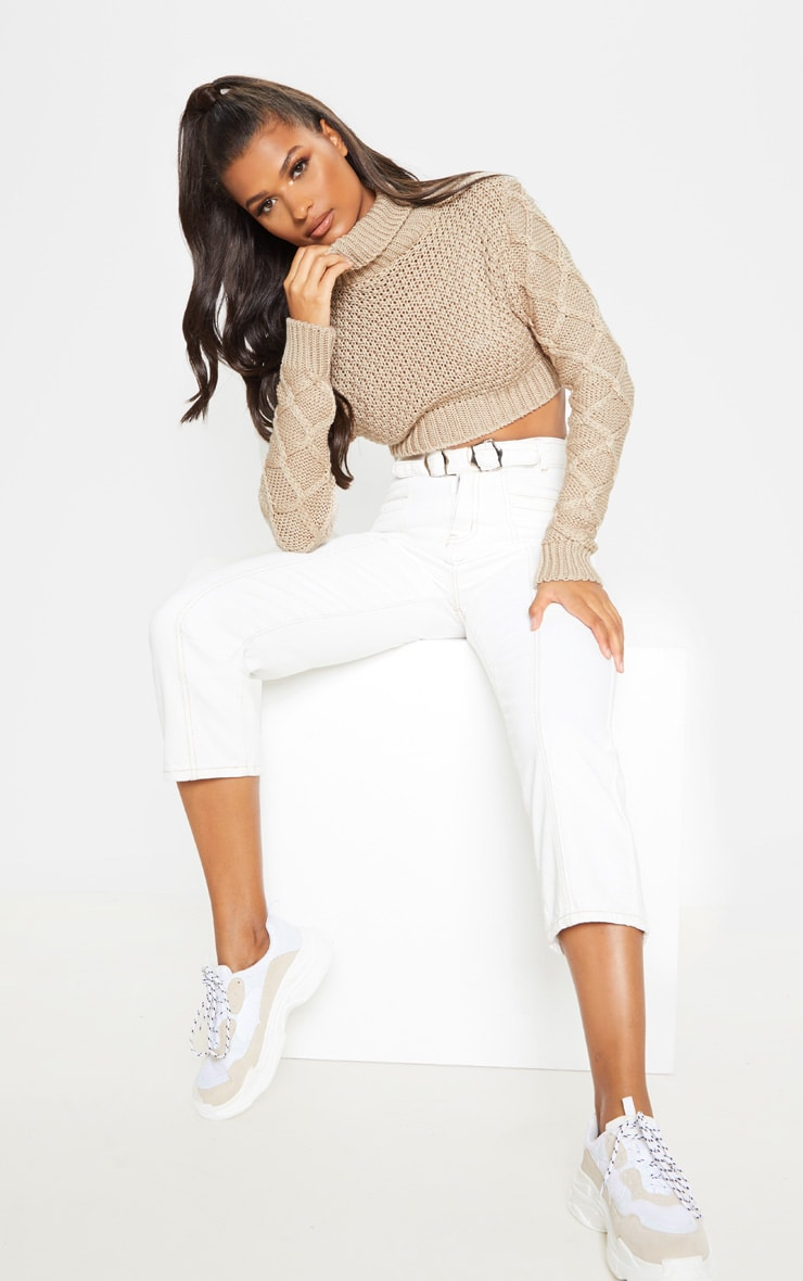 Stone Roll Neck Cable Sleeve Cropped Jumper 4