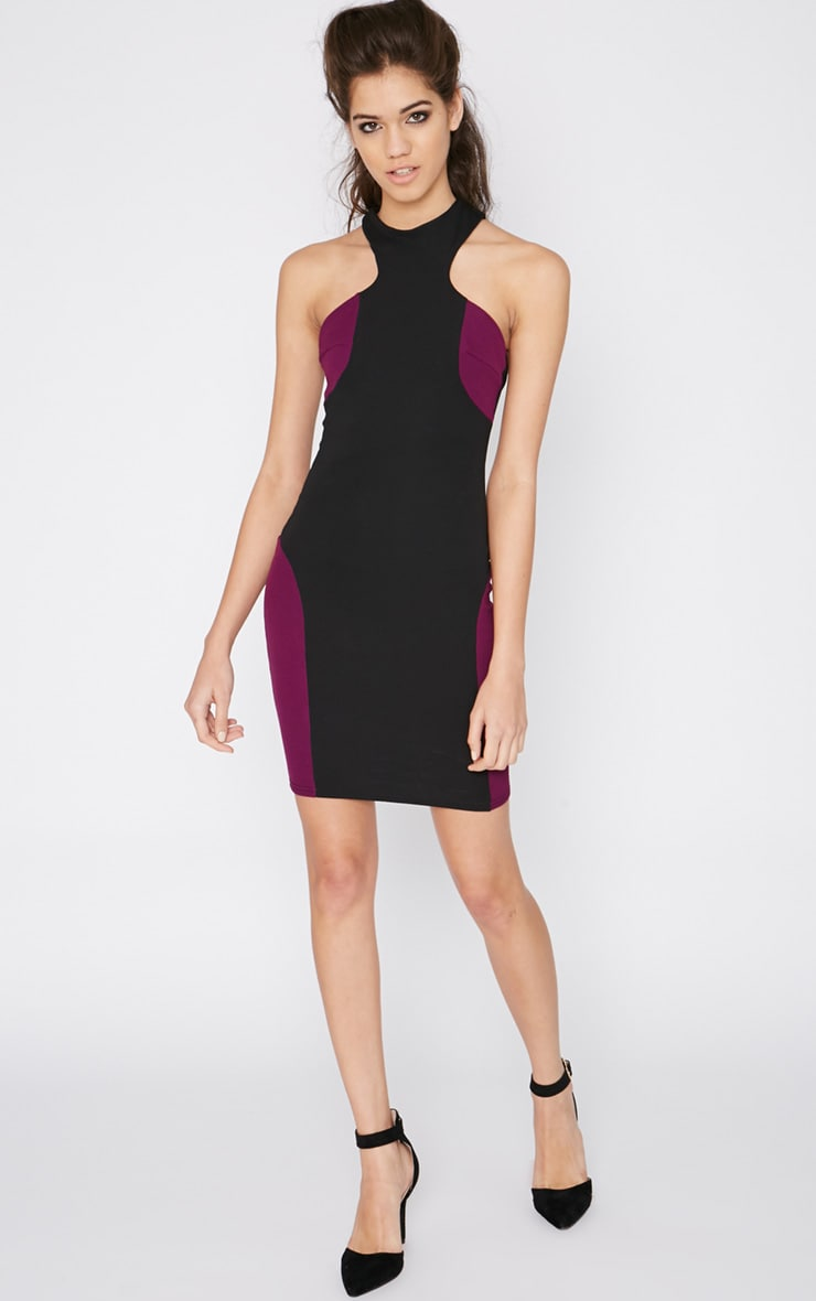 Saskia Black Panel Dress 3