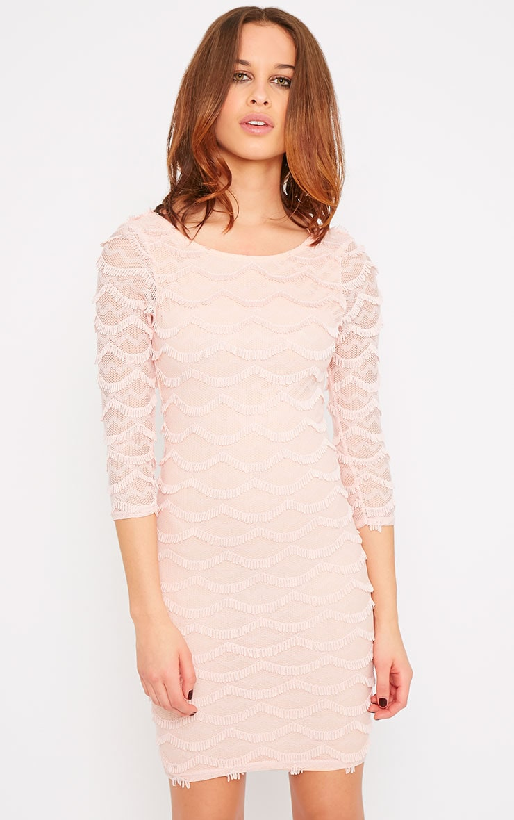 Valentina Pink Eyelash Sleeve Dress 3