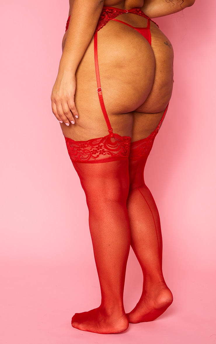 Plus Red Embroidered Lace Suspender Belt  2