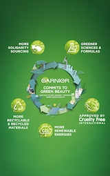 Garnier Charcoal and Black Tea Purifying and Hydrating Skin Sheet Mask 2
