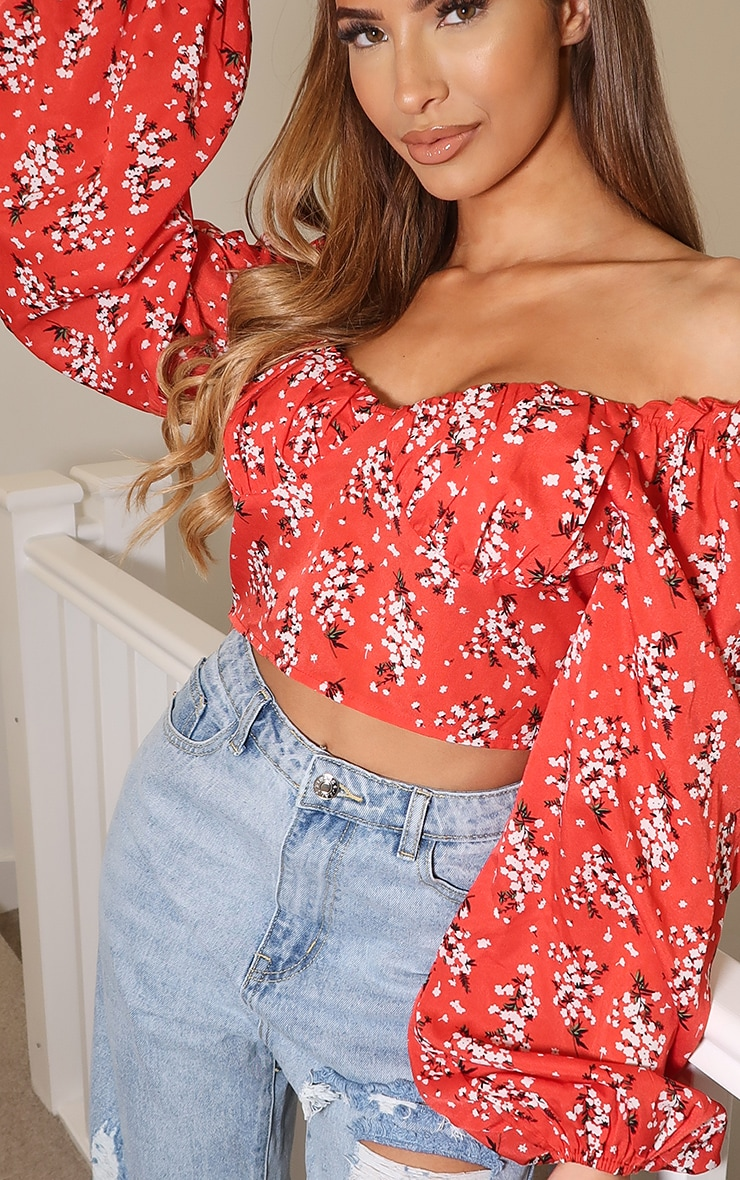 Red Ditsy Floral Mesh Cup Detail Long Sleeve Crop Top 4