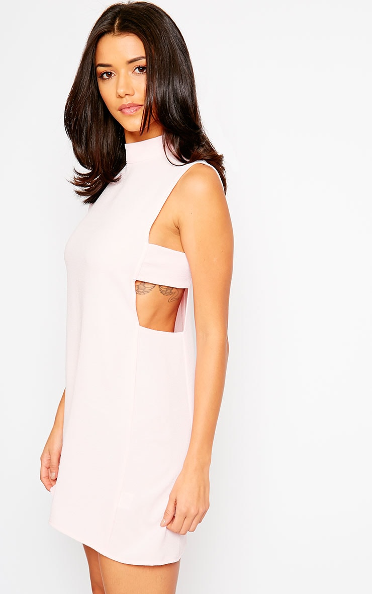 Rina Blush Cut Out Tabard Dress 3