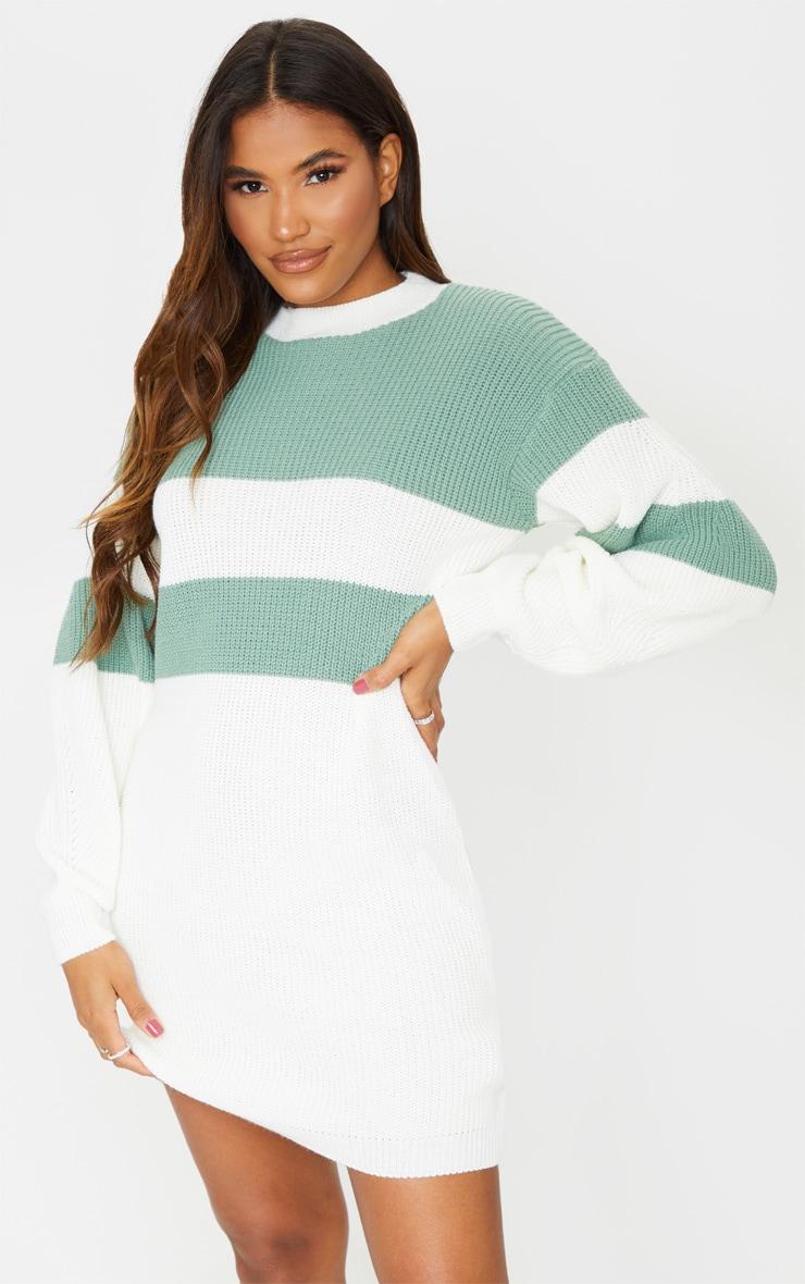 Sage Green Colour Block Turtle Neck Jumper Dress 1