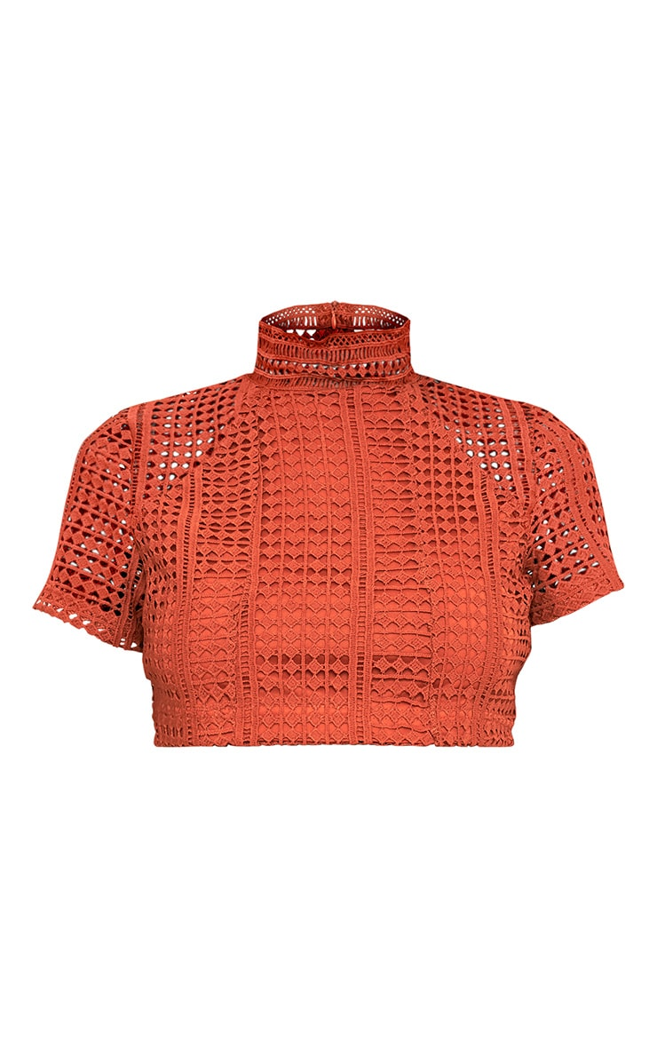 Nadene Tobacco Crochet Lace Crop Top 3