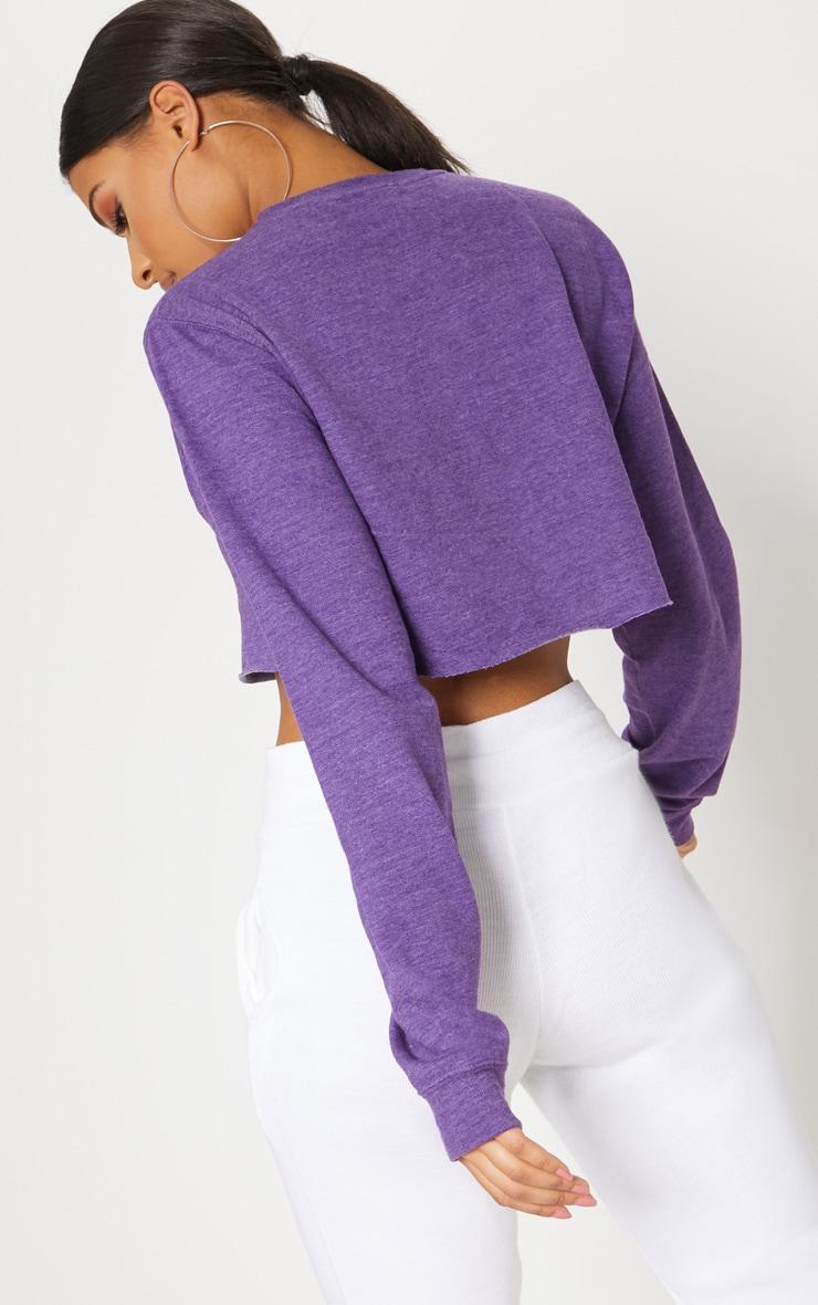 Purple Long Sleeve Crop Sweater  2