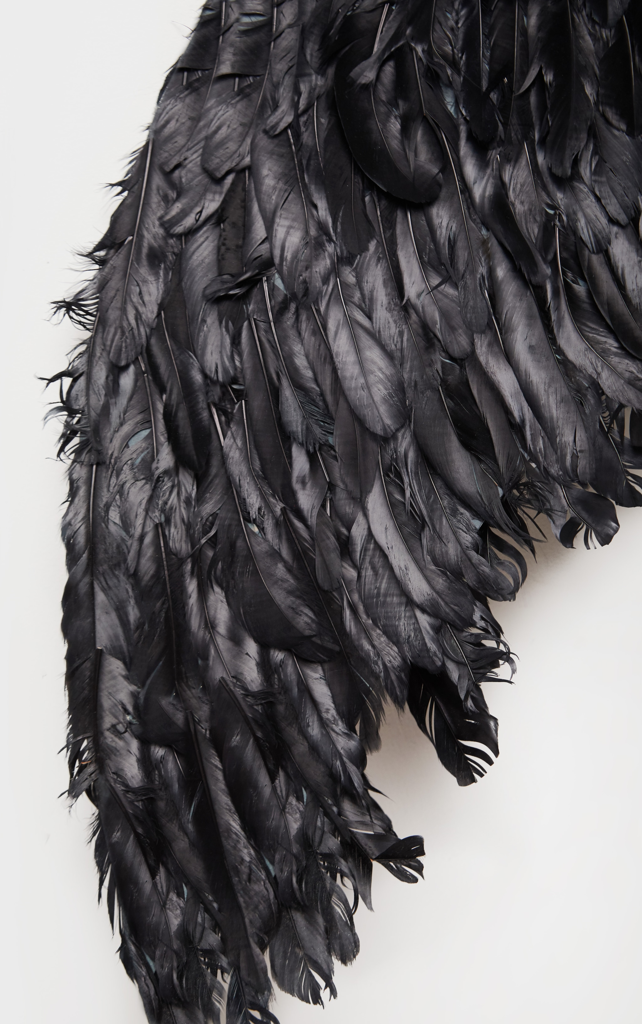 Black Extra Large Feather Angel Wings 2