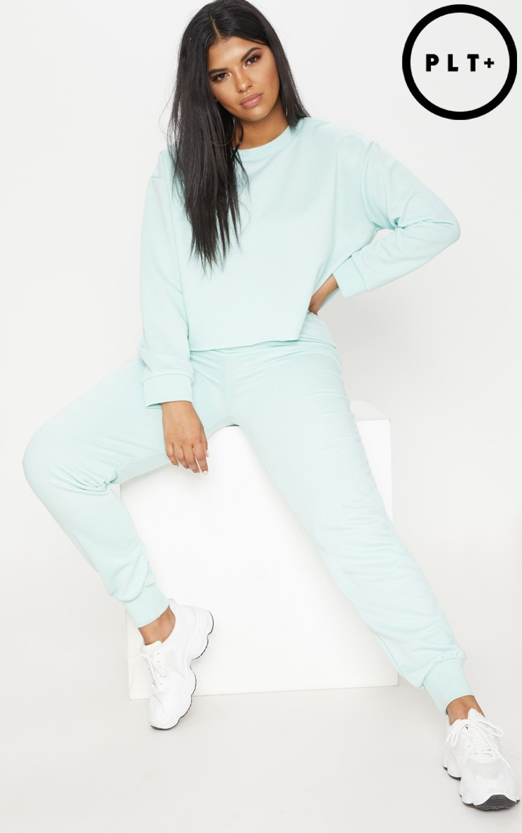 Plus Mint Extreme Crop Sweater