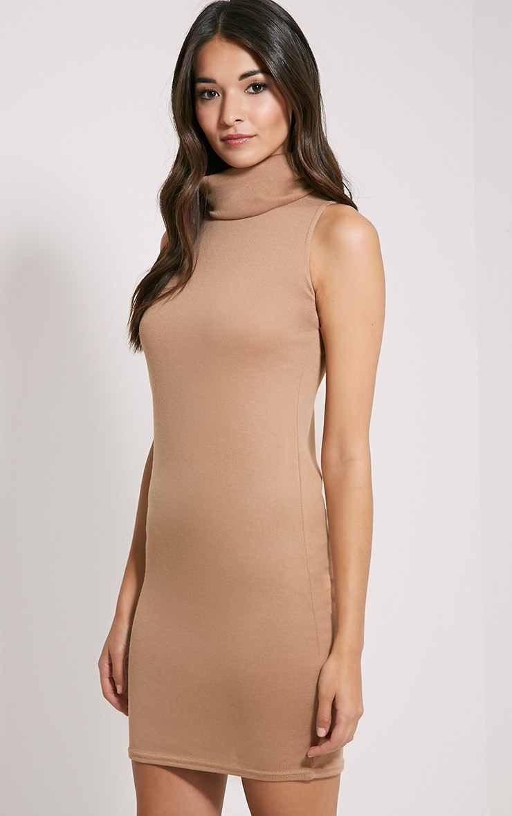 Yelena Camel Knitted Marl Roll Neck Dress 4