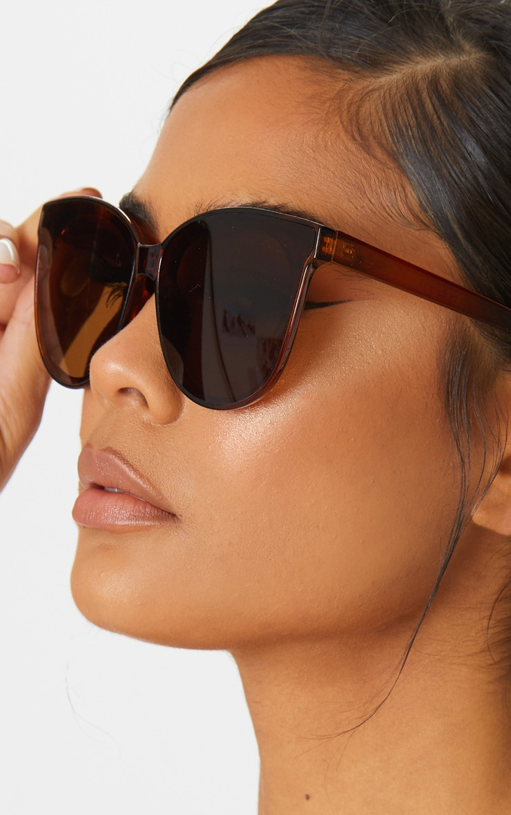 Brown Frame Winged Sunglasses 1