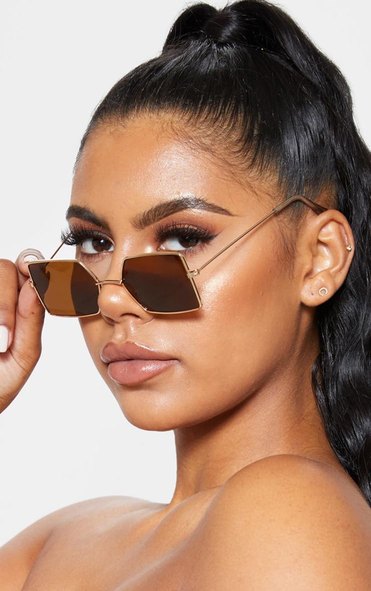 Brown Retro Square Sunglasses 1
