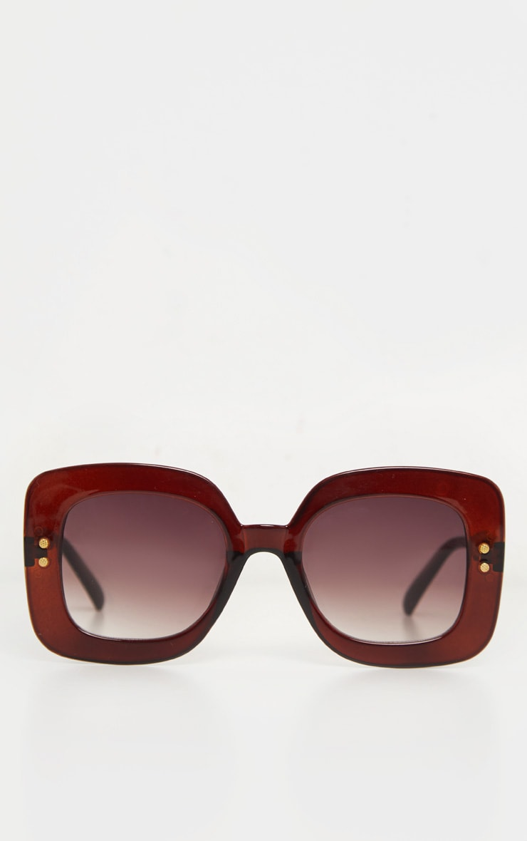 Brown Square Oversized Sunglasses 2