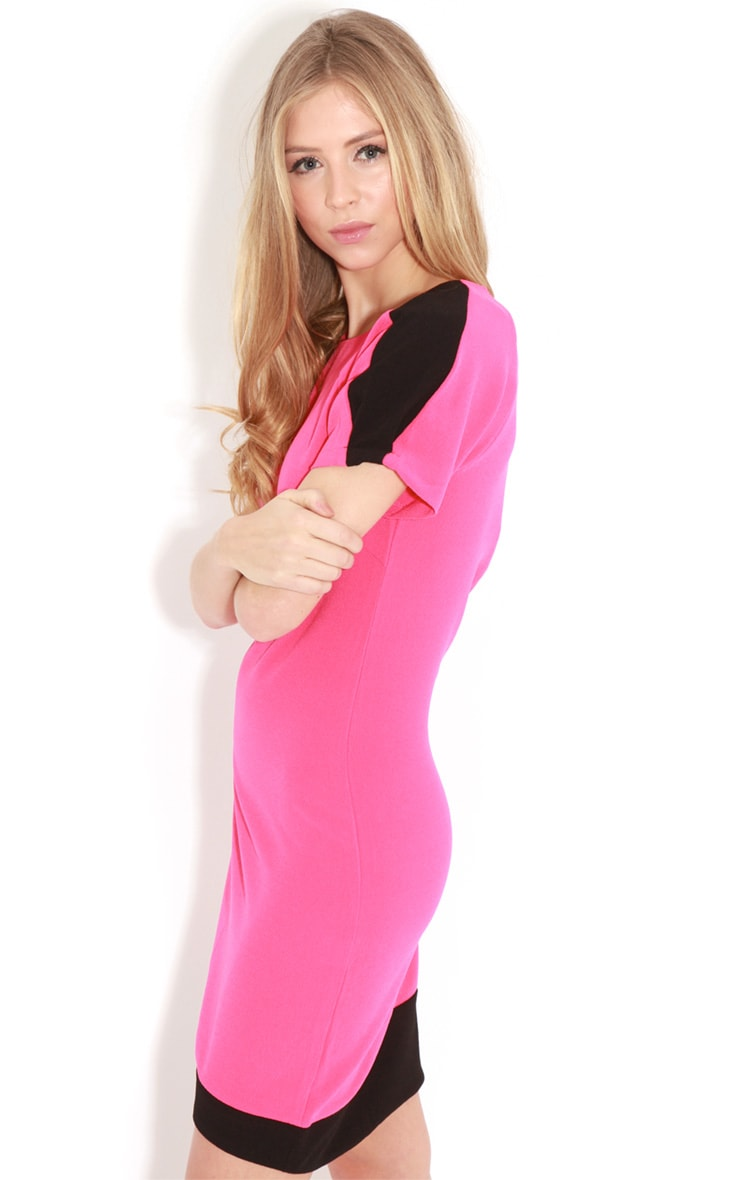 Kenzie Fuschia & Black Shift Dress 4