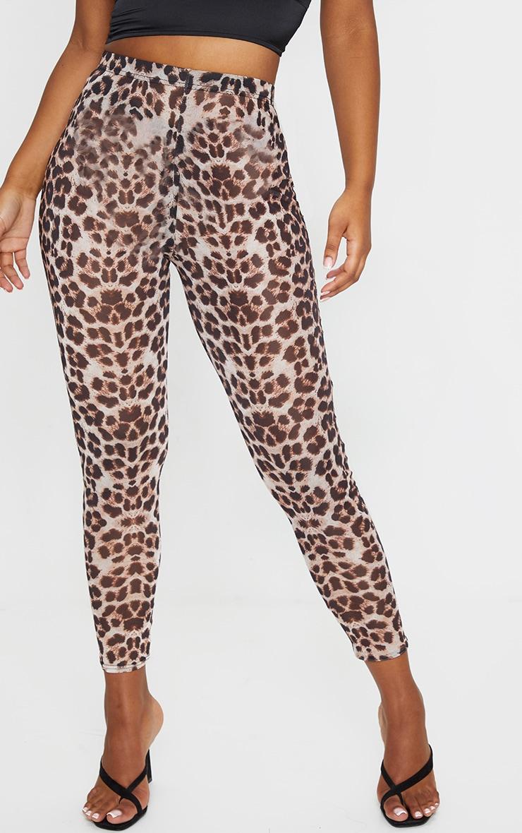 Leopard Mesh Leggings 2