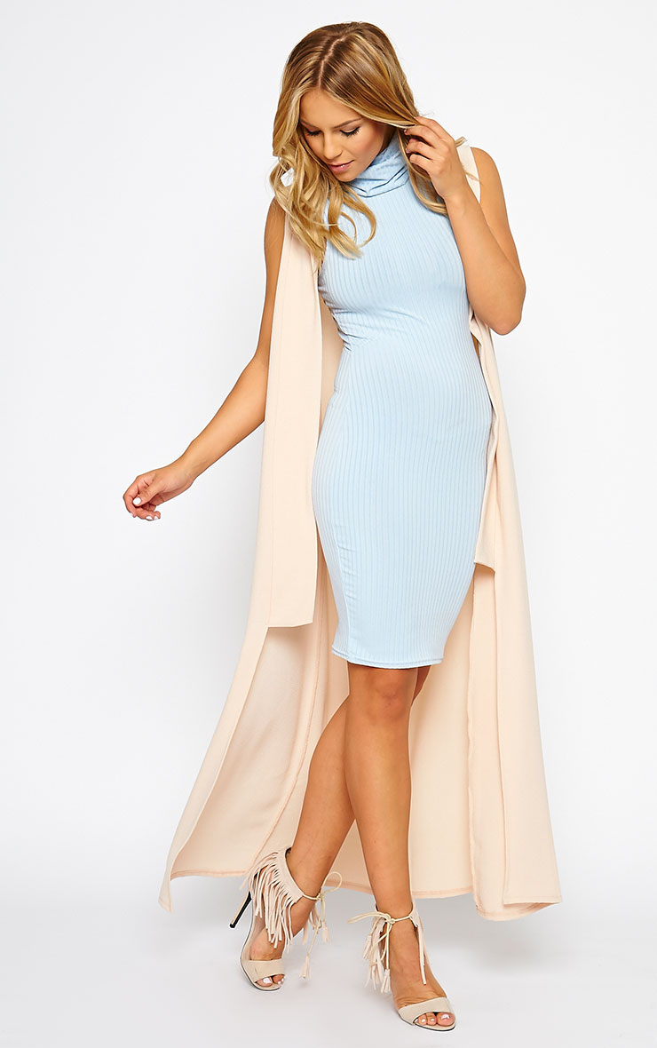 Marissa Powder Blue Ribbed Turtle Neck Mini Dress 3